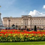 Could your office be inspired by London blooms?
